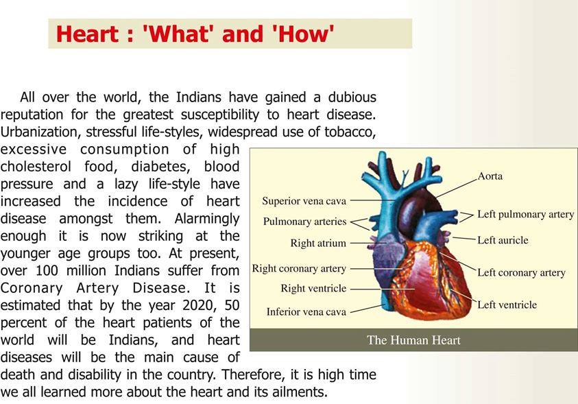 Heart: 'What' and 'How'.