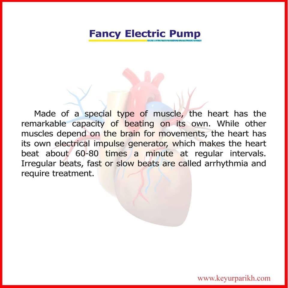 Fancy Electric Pump