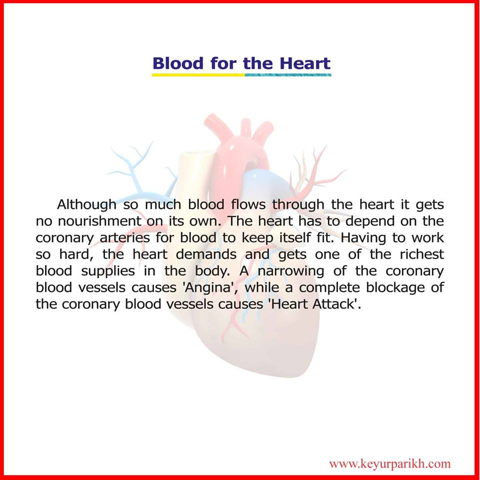 Blood for the Heart