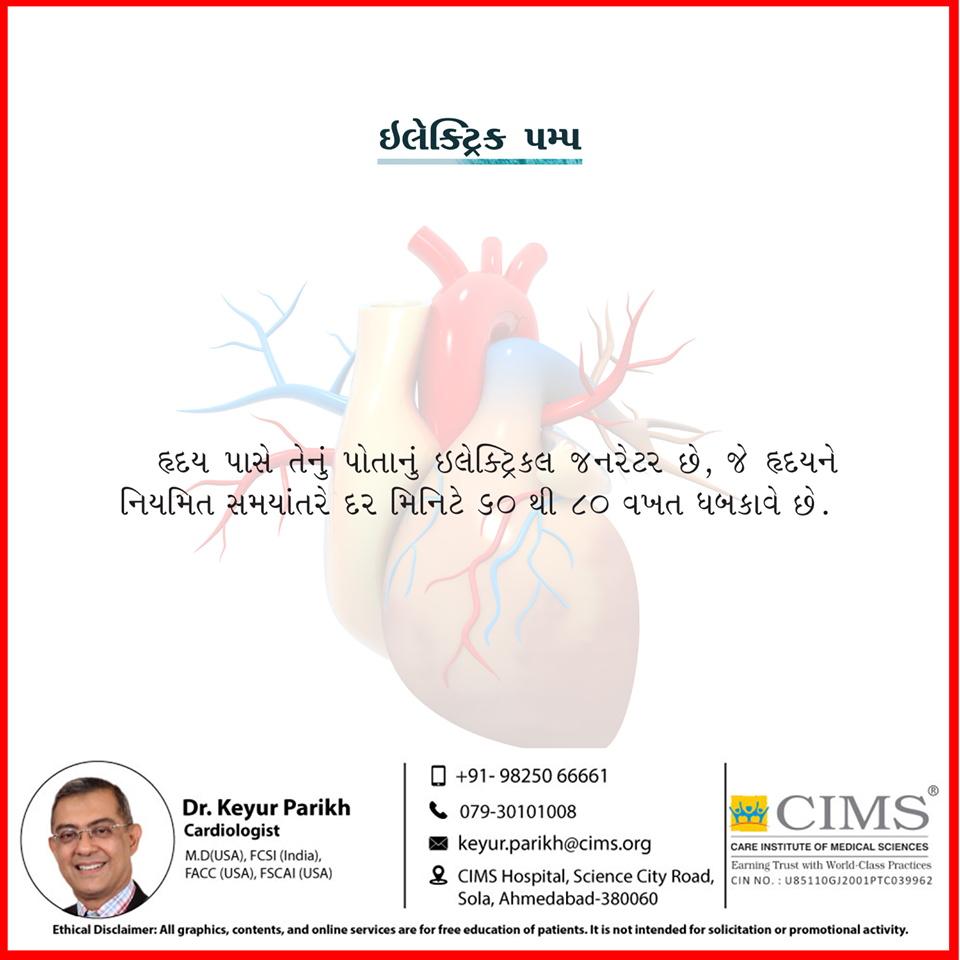 હૃદય એ એક ઈલેક્ટ્રિક પમ્પ છે.