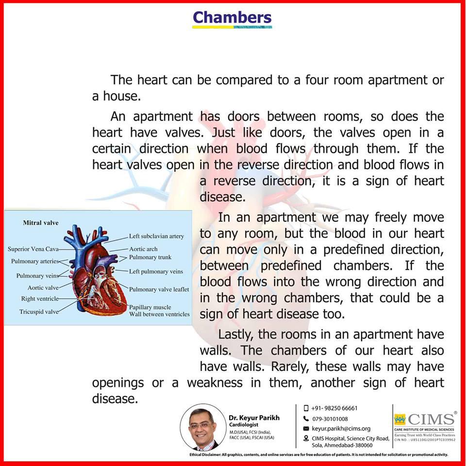 Chambers of heart.